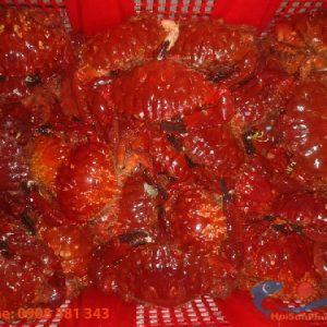 cua đỏ Phú Quý